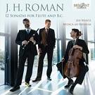 CD-Roman-Rhenum